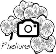 PIXELIUMS
